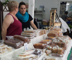 Mabou Farmers' Market: A Cat and her Kittens