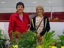 Mabou Farmers' Market: Glencoe Gardens