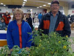 Mabou Farmers' Market: One of a Kind Benches